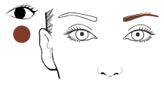 Mine brune pour sculpter les sourcils